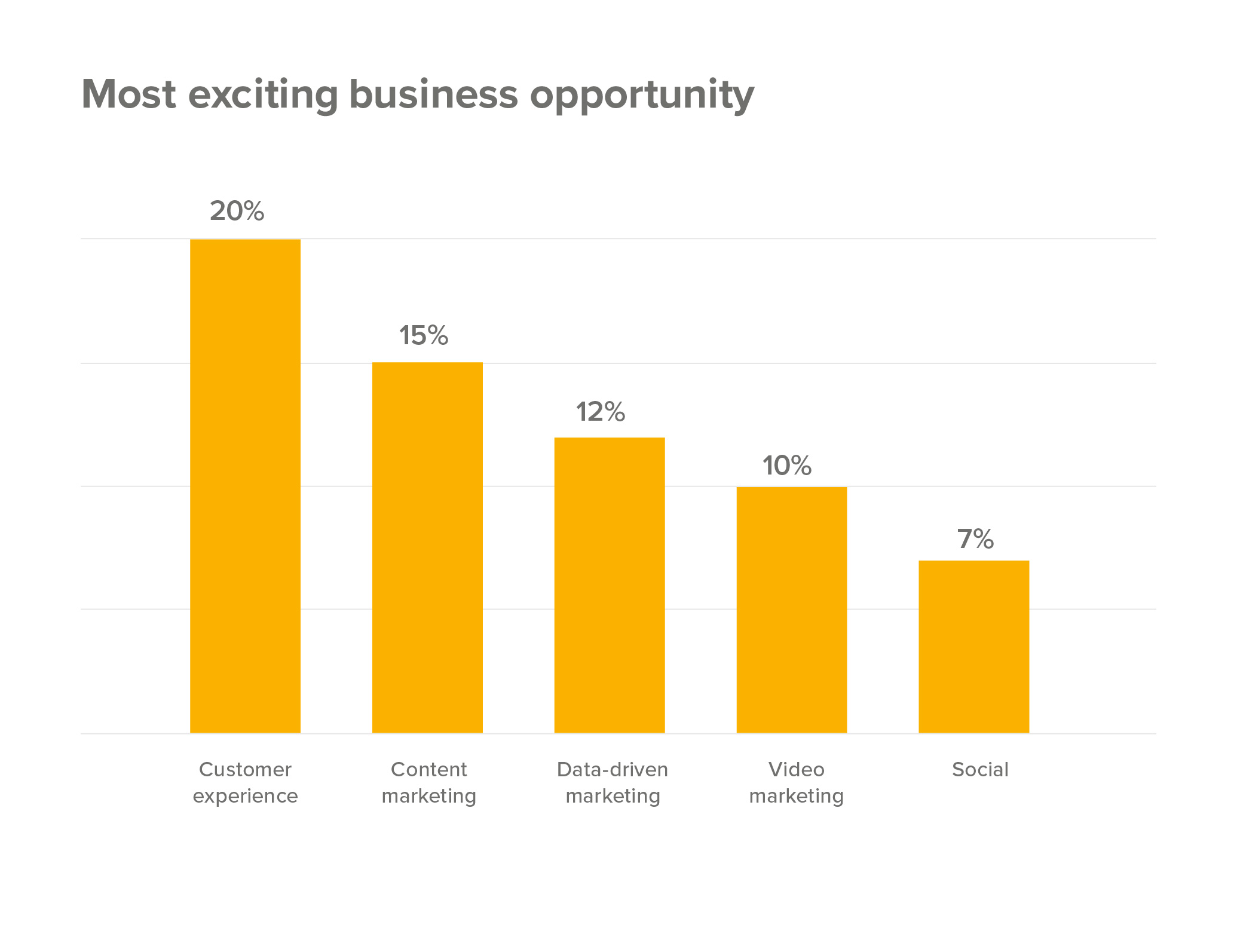 customer-experience-most-exciting-business-opportunity